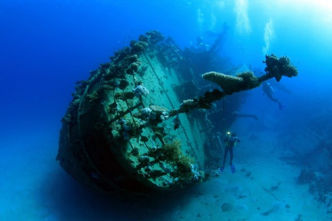 Diving Spots in Egypt